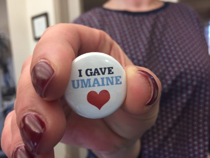 I GAVE Maine Day of Giving pin